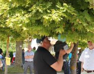 150628-schnullerbaumfest-2015-hessisch-lichtenau-021