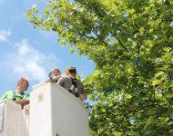 150628-schnullerbaumfest-2015-hessisch-lichtenau-034